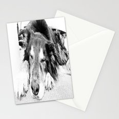 Tired Old Dog Stationery Cards