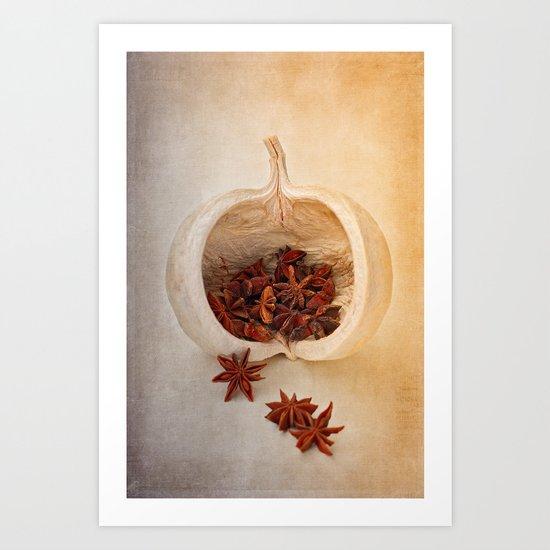 STAR ANISE Art Print