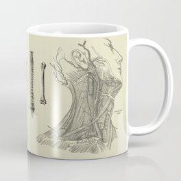 Vintage Anatomy Print Coffee Mug