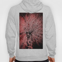 abstract   aaa Hoody