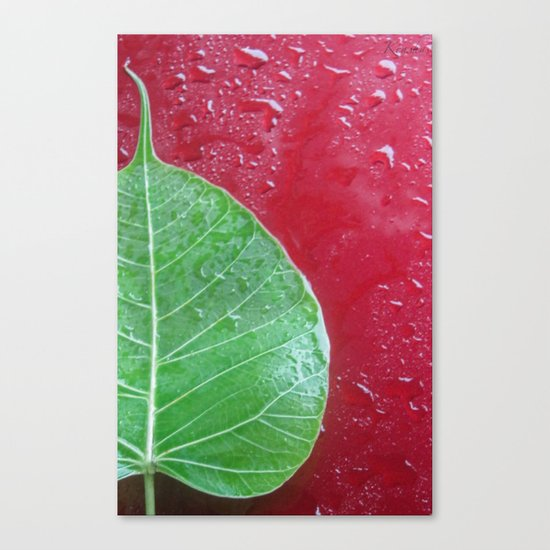Leaf on red Canvas Print