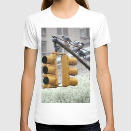 Pigeons in New York T-shirt