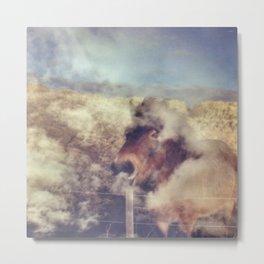Sky Pony Metal Print
