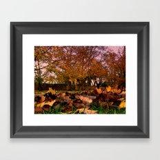 Autumn Leaves (3) Framed Art Print