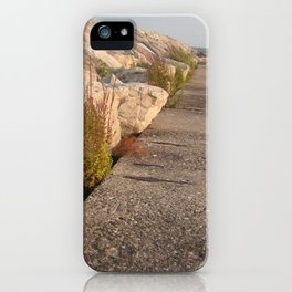 Walk along the water iPhone Case