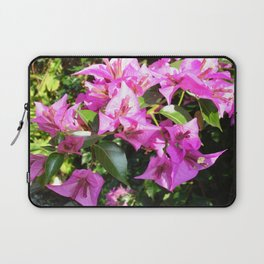 Purple Pink Bougainvillia In Blossom  Laptop Sleeve