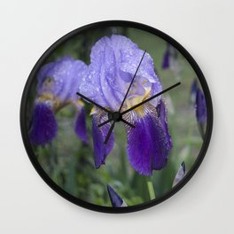 Field of Wet Iris  Wall Clock
