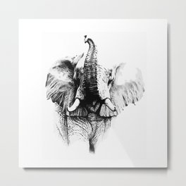 Pachyderm Metal Print
