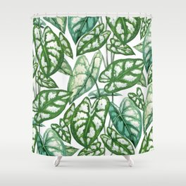 Green tropical leaves IV Shower Curtain