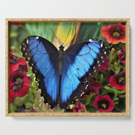 Blue Morpho Butterly by Reay of Light Serving Tray