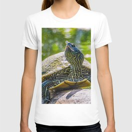 Turtle is the New Leopard Print T-shirt