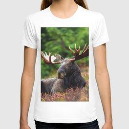Relax Moose T-shirt