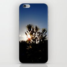 Sand Lilly Sunset iPhone & iPod Skin