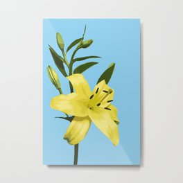 Yellow Lily on Sky Blue Background Illustrated Print Metal Print