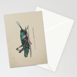 Eastern Lubber Grasshopper Stationery Cards