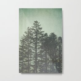 Trees in Fog Metal Print