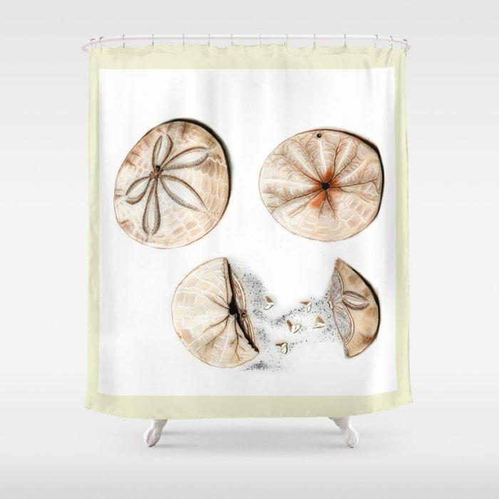 Sand Dollars Shower Curtain