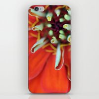 brand new iPhone & iPod Skins featuring Brand New Day by Olivia Hendren