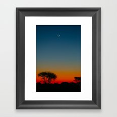 Life, Saturated Framed Art Print