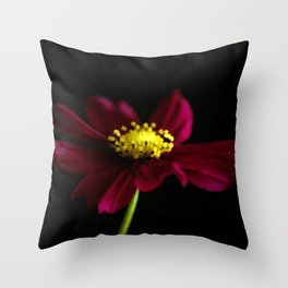 Elegance of a Cosmo Throw Pillow