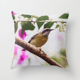 Bird - Photography Paper Effect 008 Throw Pillow