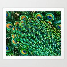 Fan Feathers Art Print