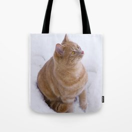 Kitten Discovers Snow! Tote Bag