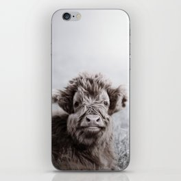 HIGHLAND CATTLE CALF ALF iPhone Skin