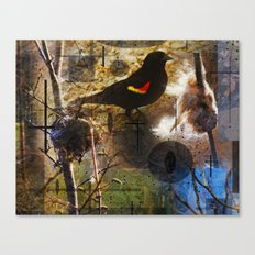 life thru the eyes of a red winged blackbird Canvas Print