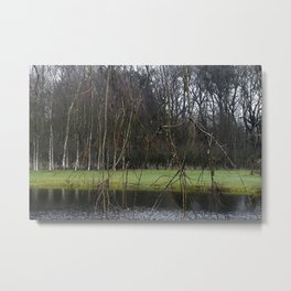 A little pond in a forest in the Netherlands Metal Print
