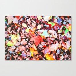 Maple foliage texture Canvas Print