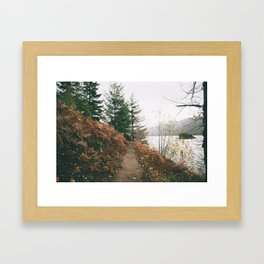 Happy Trails XVI Framed Art Print