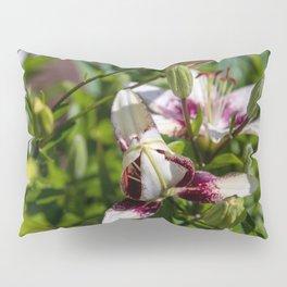 praying lily Pillow Sham