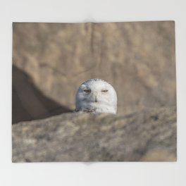 Peekaboo Snowy Owl Throw Blanket