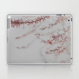 Soft Dusty Pink Lullaby Laptop & iPad Skin