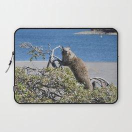 Wildlife, California Ground Squirrel Laptop Sleeve