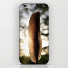 Feather Light iPhone & iPod Skin