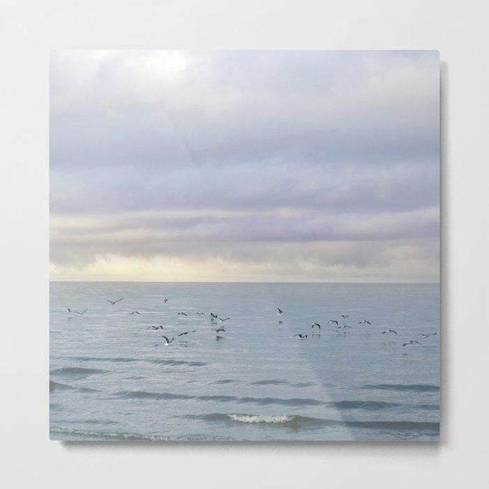 The Seagulls 5 Metal Print
