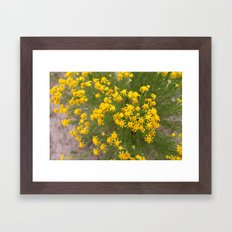 Yellow Wild Flowers Framed Art Print
