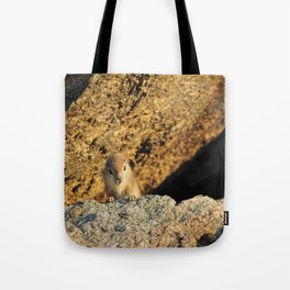 Ground Squirrel Baby Tote Bag