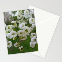 Each Bloom is a Celebration Stationery Cards