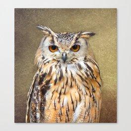 Indian Eagle Owl Canvas Print