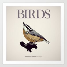 BIRDS 01 Art Print