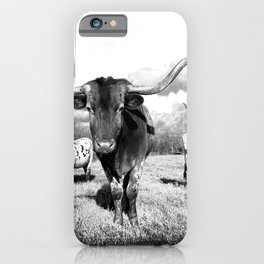 Longhorn Cattle Black and White Highland Cows  iPhone Case