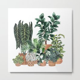 House Plants Watercolor Illustration 5 Metal Print