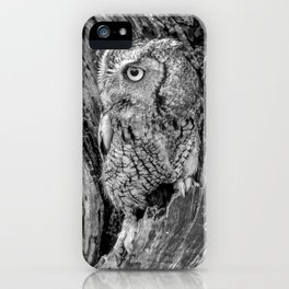 Echo the Screech Owl by Teresa Thompson iPhone Case