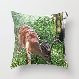 DINNER IN THE COVE Throw Pillow