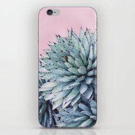Pink Crush Succulent I iPhone Skin