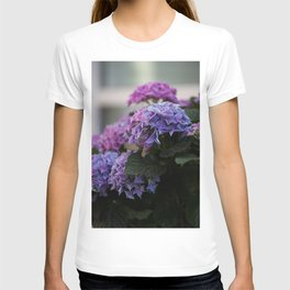 Big Hortensia flowers in front of a window T-shirt