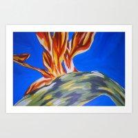 Bird of Paradise Art Print
